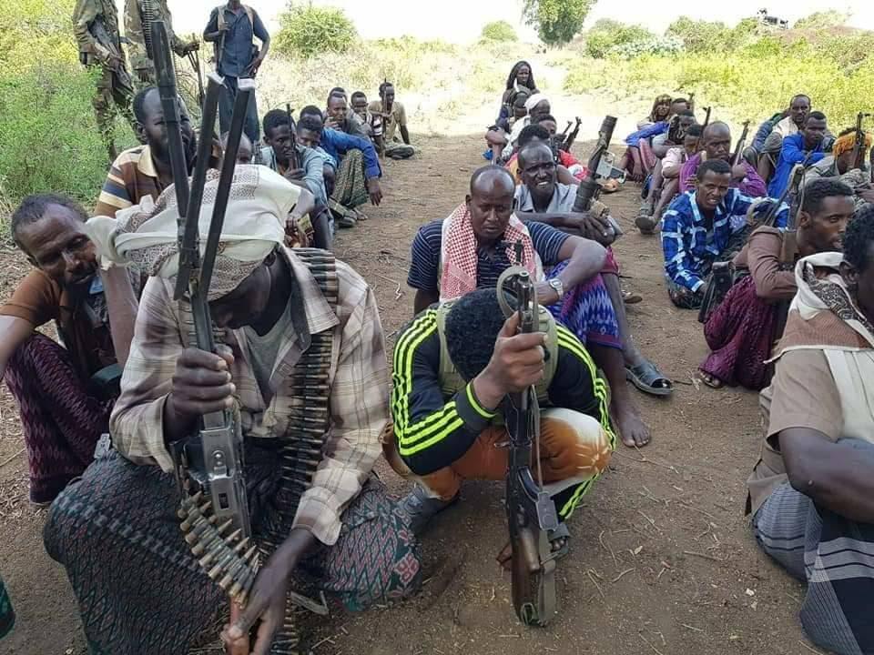Ajnabi ka tirsanaa kooxda Al-Shabaab oo lagu dilay dagaal ka dhacay Gobolka Hiiraan