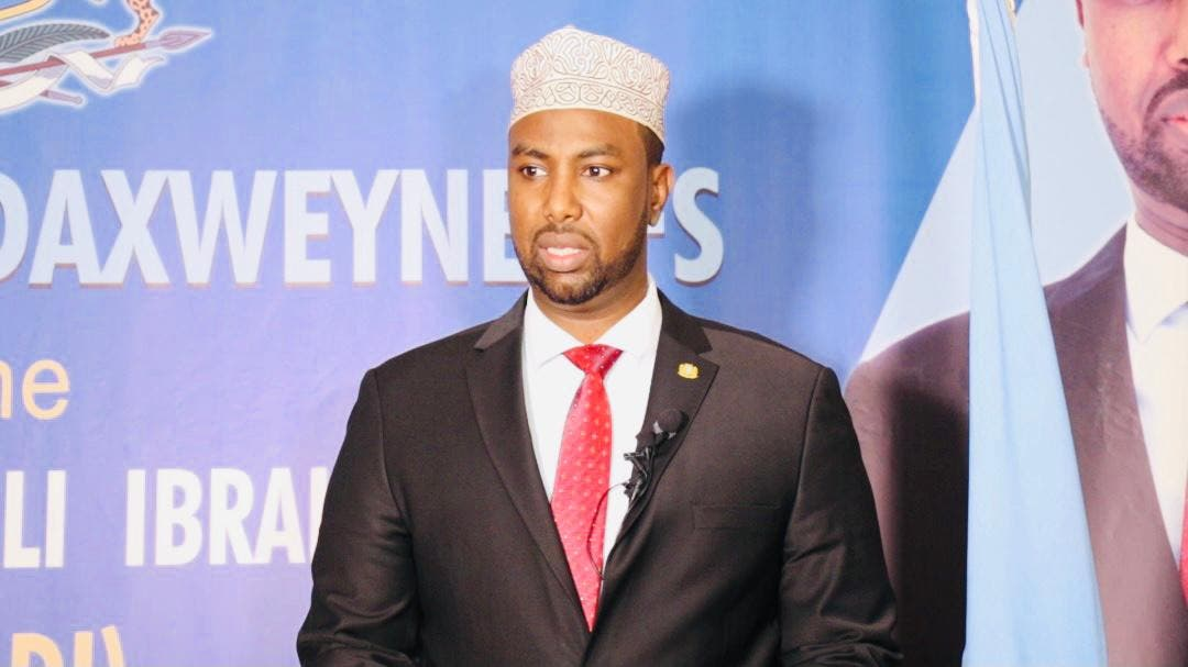 Former Somali Minister of State for presidential affairs to run for president