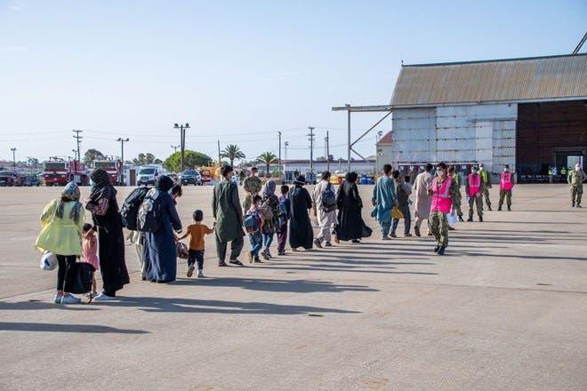 Somaliland oo 'ogolaatay' dalabka MAREYKANKA ee qaxootiga AFGHANISTAN