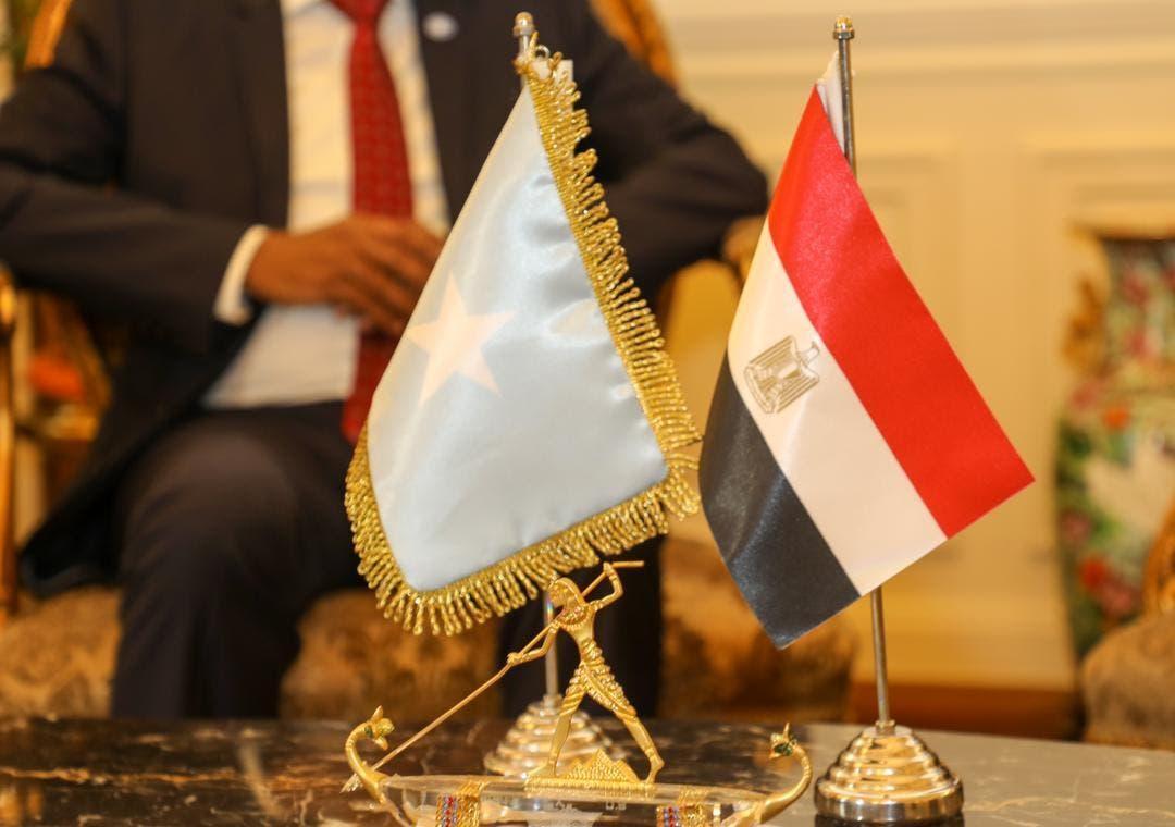 Egypt pledges support to Somalia, eyeing Horn of Africa influence